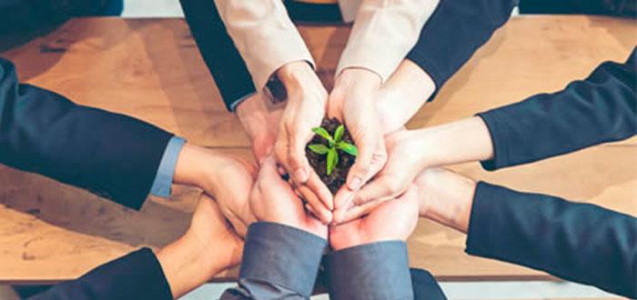 Foto da Notícia O que é e como funciona a sustentabilidade empresarial?