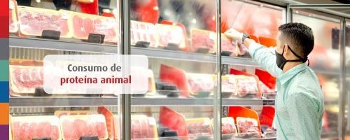 Consumo de proteína animal: faz mal comer carne todos os dias?